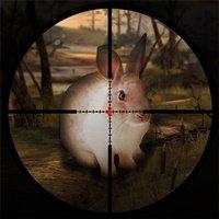 Classical Rabbit Sniper Hunting