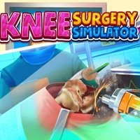 Knee Surgery Simulator
