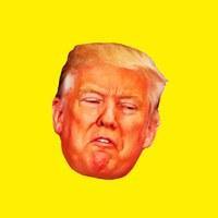 Money Hunter Trump