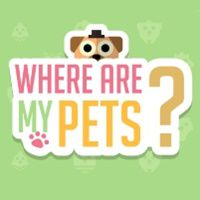 Where Are My Pets?